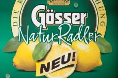goesser_5982_fertig_web