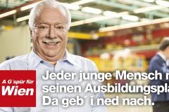 SPÖW Gspür Phase2 Plakate 24Bg_v4.indd
